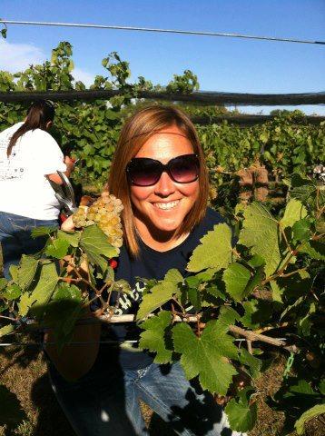 2015 Harvest Recap
